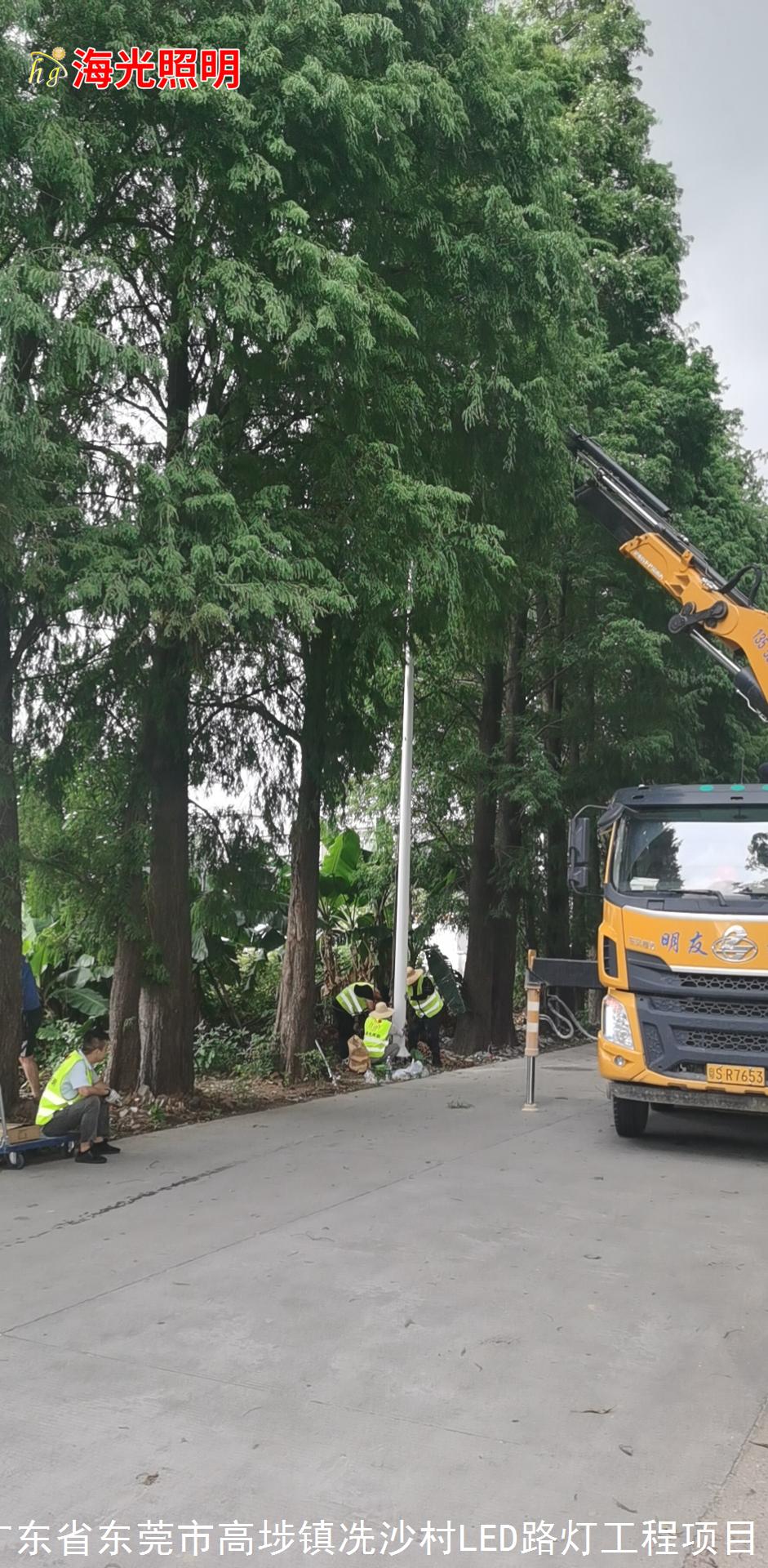 广东省东莞市高埗镇冼沙村LED路灯照明工程项目
